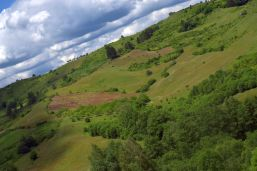 Goran Djukanovic Uphill travel